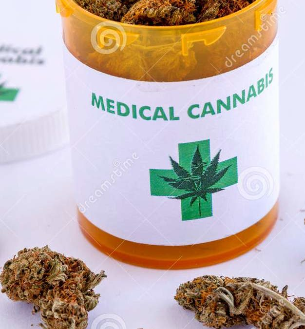 cannabis social club barcelona