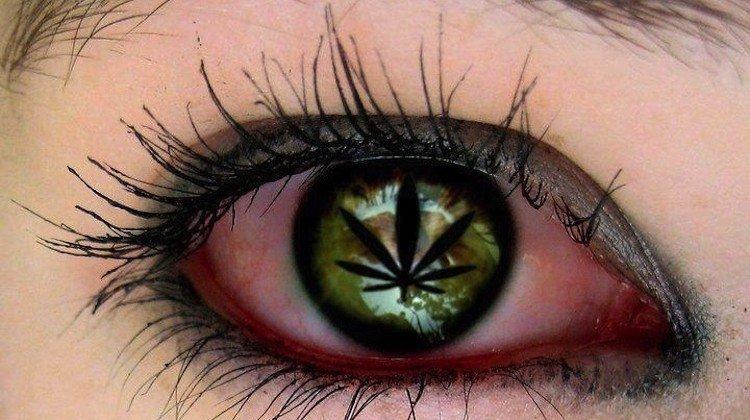 Il British Medical Journal dichiara: legalizzate le droghe!