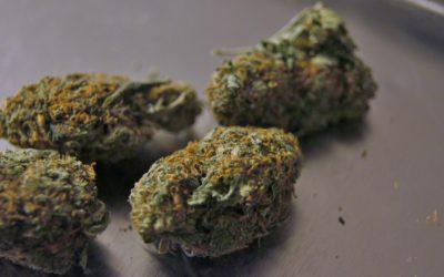"""Cannabis legale, la Germania manda in """"fumo"""" i suoi dogmi!"""